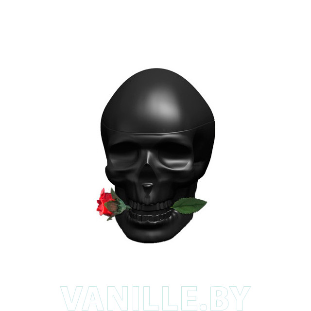 Ed Hardy Skulls & Roses for Him фото